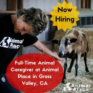 It's time to land your dream job! Apply to be Animal Place's