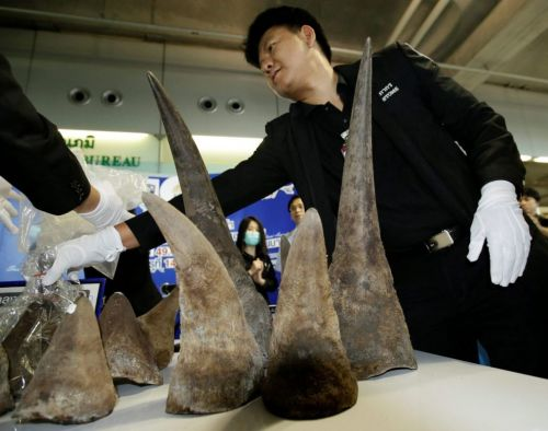Wildlife crime pays for poachers, traffickers - Washington Times