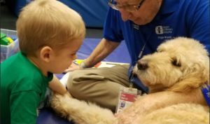 Doggie Brigade Brings Healing To Children's Hospital Patients