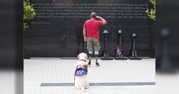 This Veteran's Service Dog Passed Away - And We Need Your Help To Get Him A New One