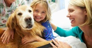 Clinical Trials Are Underway For A Canine Cancer Vaccine