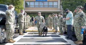 Celebrated Bomb-Sniffing Dog Now Only Finds Tennis Balls