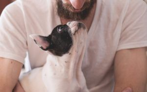Scientifically Proven Ways To Show Your Dogs How Much You Love Them