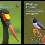 Birds of Kruger National Park and Wildlife of Ecuador: Two WILDGuides Reviewed