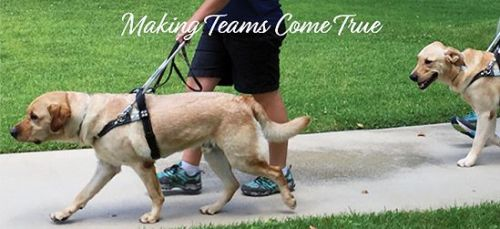 Guide Dogs of America Open House: Making Teams Come True