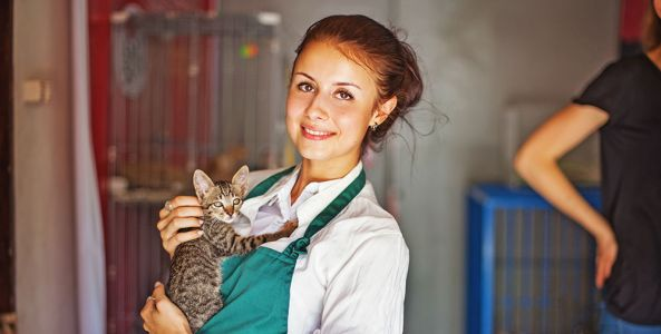 We Vote for Supporting and Appreciating Animal Shelters and Rescue Organizations!