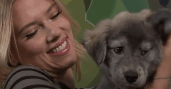 Celebrities Snuggle Rescue Puppies At The Toronto Film Festival
