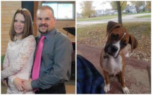 Strangers Meet In Dog Lover Group And Now They're 'The Boxer Brady Bunch'