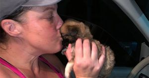 Woman Overcomes Her Struggles and Opens an Animal Rescue in Honduras