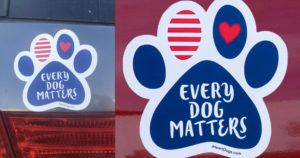 Have you seen these on Cars? One company is giving them away FREE and starting a movement