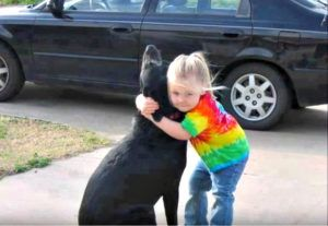 Little Girl Mails Letter To God After Dog Passes. He Writes Back
