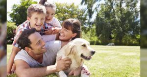 Finding Free Peace of Mind Can Help You Save Your Dog's Life