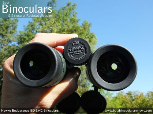 BirdWatching Binoculars 101