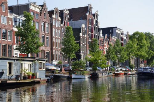 Pet Friendly Netherlands - a Great Place to Visit