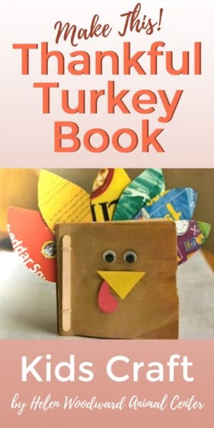 Thanksgiving Kids Craft - The Thankful Turkey Book
