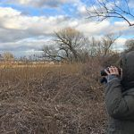 Where Are You Birding This Final Weekend of March 2019?