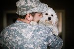 Hotel Discounts for Military Travelers with Pets