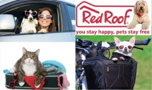Red Roof Inn: Where Your Dog Stays-For Free!