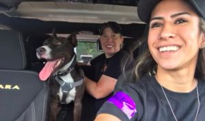 Crate-Hating Dog Challenges His Rescuers, But Gets A Second Chance, Thanks To You!