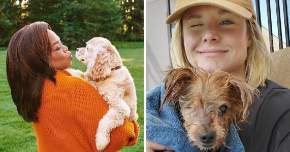Check Out 32 Photos Of Adorable Pups & Their Celebrity Parents!
