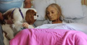 Hospice Surprises Terminal Cancer Patient With Her Dogs And Horse