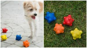 Why Natural Rubber Toys Are Best For Your Pup