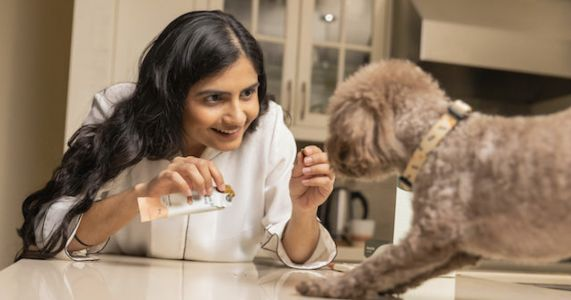 Monch Bars Are The To-Go Snack Every Dog Needs This Summer