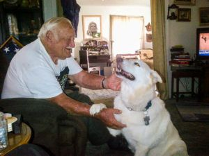 Senior Veteran Rescues Fellow Sailor's Senior GSD From Euthanasia