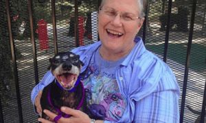 """Widow Goes Into Shelter & Decides To Give A Home To Their """"Hardest To Adopt"""" Dog"""