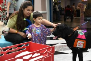 Dunkin' And Baskin-Robbins Aim To Fill Children's Hospitals With Therapy Dogs