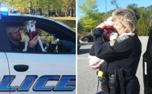 Terminally Ill Pooch Becomes An Honorary Police Dog For A Day