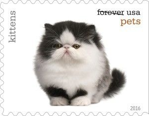New pet stamps coming this year