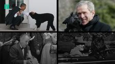 Dogs Of The White House