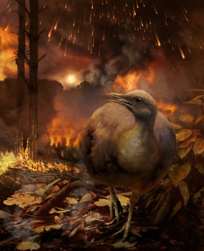 Asteroid Impact Grounded Bird Ancestors