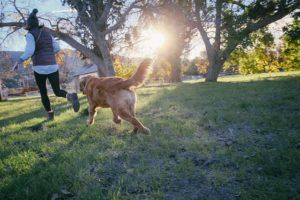 9+ Scientific Benefits Of Having A Dog