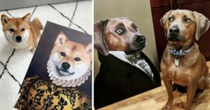 Company Embraces Your Dog's Inner Royalty With Majestic Portraits