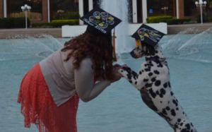 Service Dog Gets Her Own Graduation Cap For Helping Her Master Succeed