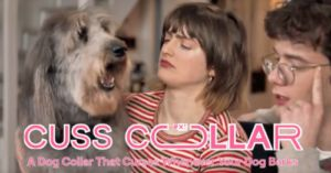 "Crude ""Cuss Collar"" Swears When Your Dog Barks"