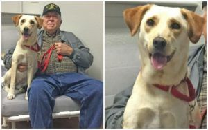 "This Deserving Veteran Was Paired With His ""Best Buddy,"" Thanks To Your Support!"