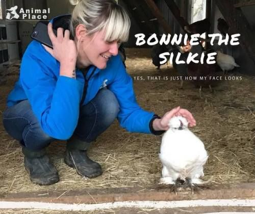 Bonnie is one of the survivors of the feed store cruelty case
