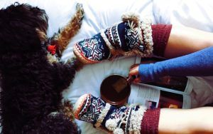 Turn Staying Indoors Into Cozy Fun For You And Your Dog This Winter