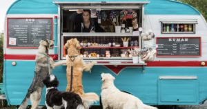UPDATE: Seattle's First Dog Food Truck Is Every Dog's Dream Come True!