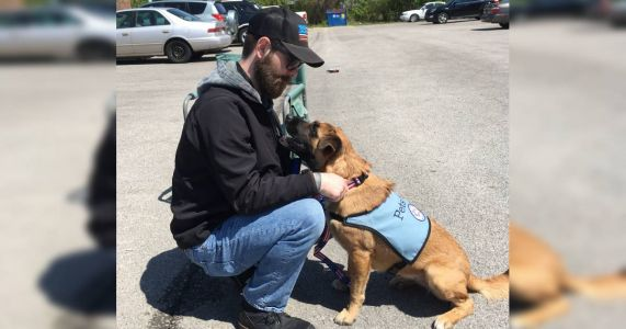 A Rescue Dog Named Bailey Saved This Army Vet With PTSD