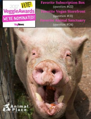 Don't forget to vote for us in VegNews' annual Veggie