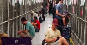 Compassionate Volunteers Celebrate July Fourth By Comforting Pups In Shelters