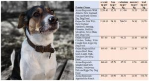 "Specialty Pet Food Company Faces Lawsuit For ""False Advertising"""