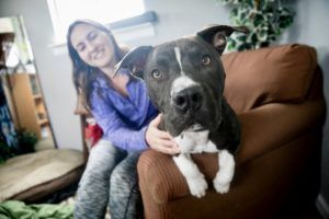 Can You Give Keller His Forever Home? Austin Animal Center Needs You!
