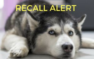 RECALL ALERT: Two Companies Recall Products Due To Salmonella Concerns
