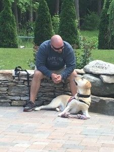 Placement of PTSD Dogs with Veterans: Service Dog Trainers to Have Standards