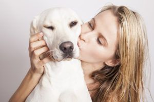 9 Things Humans Do That Stress Our Dogs Out